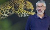 Locarno 2014: il Boccalino d'oro premia Pedro Costa