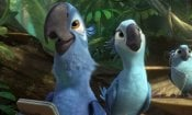 Rio 2: Missione Amazzonia in homevideo: ecco cover ed extra