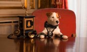 Pongo, il cane milionario: clip esclusiva del film