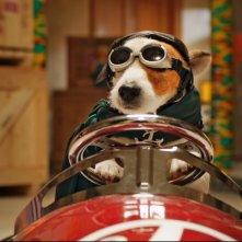 Pongo il cane milionario: il ricco e peloso protagonista del film al volante