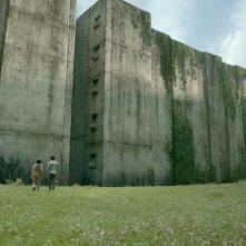 Maze Runner - Il labirinto: una suggestiva scena del film