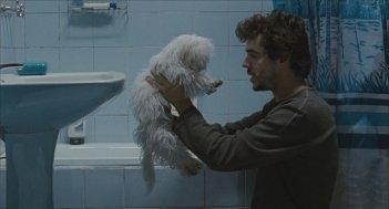 Medianeras - Innamorarsi a Buenos Aires: Javier Drolas con il suo cagnolino in una scena del film