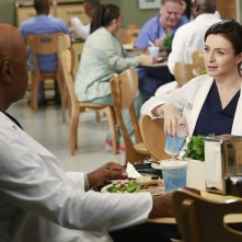 Grey's Anatomy: James Pickens Jr. e Caterina Scorsone in Puzzle With a Piece Missing