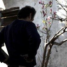 Mauro: un'immagine di scena del film
