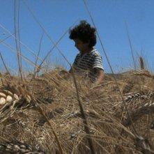 Sarà un Paese: il piccolo Elia Saman in una scena del film