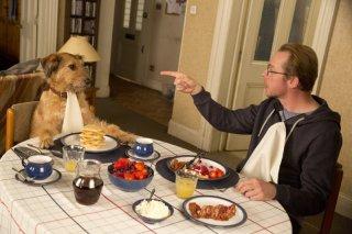 Un'occasione da Dio: Simon Pegg fa colazione insieme la suo cane