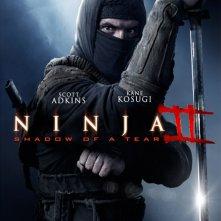Locandina di Ninja: Shadow of a Tear