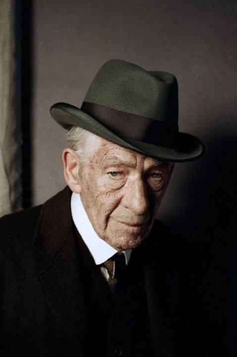Mr. Holmes - Il mistero del caso irrisolto: Ian McKellen nel panni di uno Sherlock Holmes maturo