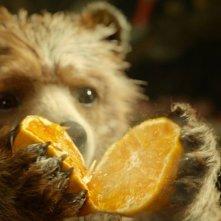 Paddington: il simpatico orsetto alle prese con un'arancia in un momento del film