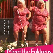 Locandina di Meet The Fokkens