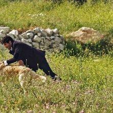 Italo: Marco Bocci con il cagnolone Italo in una scena del film