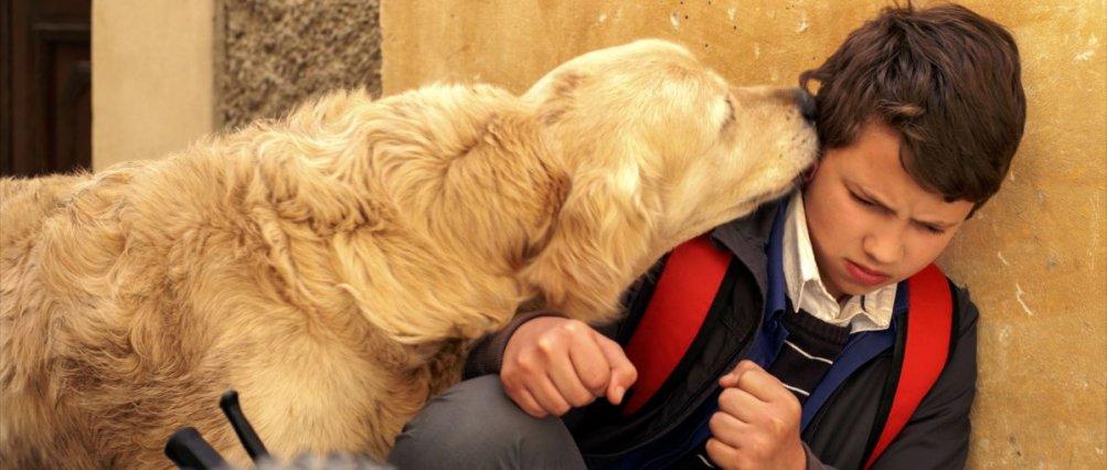 Italo: Vincenzo Lauretta con il cane Italo in una tenera scena del film