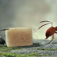 MINUSCULE - La valle delle formiche perdute: formiche rosse in agguato in una scena del film