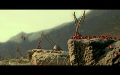 Clip 'La battaglia delle formiche' - Minuscule - La valle delle formiche perdute