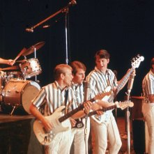 I Beach Boys in concerto: Brian, Dennis, Carl Wilson e il cugino Mike Love