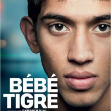 Locandina di Bébé Tigre