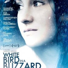 Locandina di White Bird in a Blizzard