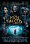 Locandina italiana di Into the Woods