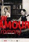 Locandina di Un amour: Roman