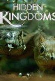 Locandina di Hidden Kingdoms - Micromondi