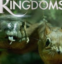 Locandina di Hidden Kingdoms - Micromondi
