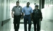 Ossessione Omicida, Pom Poko e gli altri consigli homevideo della settimana