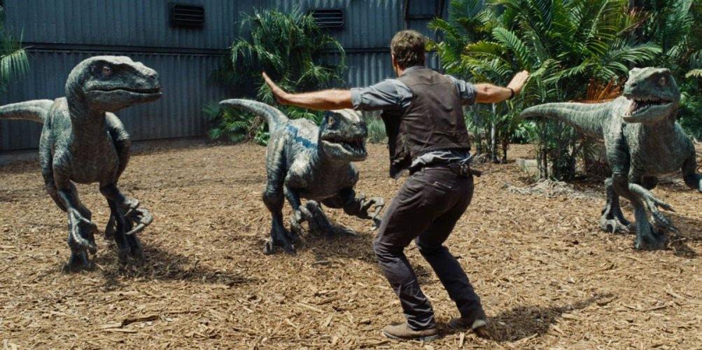 Jurassic World: Chris Pratt tiene a bada i dinosauri in una scena del film