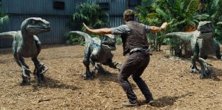 Jurassic World: Chris Pratt tiene a bada i dinosauri in una scena del film
