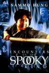 Locandina di Spooky Encounters