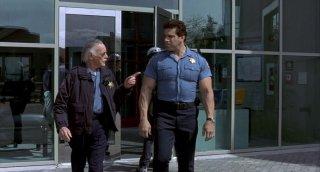 Hulk: il cameo di Stan Lee e Lou Ferrigno