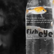 Locandina di Fisheye