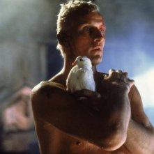 Blade Runner - Rutger Hauer in una scena