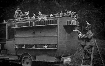 Trailer - Animalinella Grande Guerra