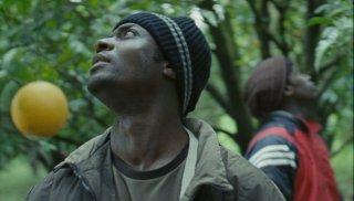 Mediterranea: Koudous Seihon in una scena