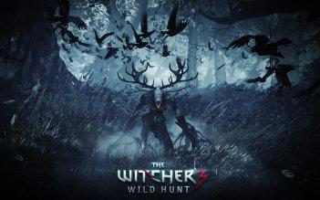 Il videogioco The Witcher 3