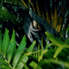 Jurassic World: L'Indominus Rex sbircia tra i cespugli