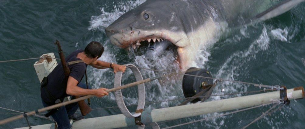 Lo Squalo, una delle scene clou del film