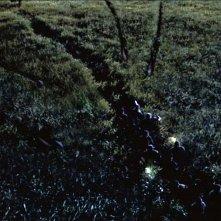 Il mondo perduto - Jurassic Park: i raptor attaccano nell'erba alta