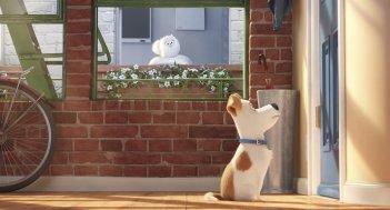 Pets - Vita da animali: una scena del film