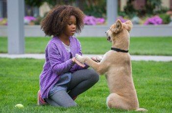 Annie - La felicità è contagiosa: Quvenzhané Wallis nei panni di Annie insieme al suo cagnolino in un momento del film