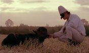 Bella e perduta, documentario on the road tra mito, natura e cronaca