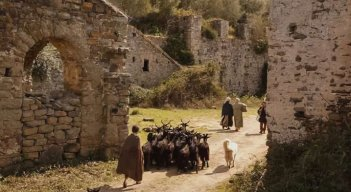 Pastorale cilentana: Mattia Oricchio conduce le capre al pascolo