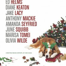 Locandina di Love the Coopers
