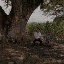 Un mondo fragile: un'immagine del film