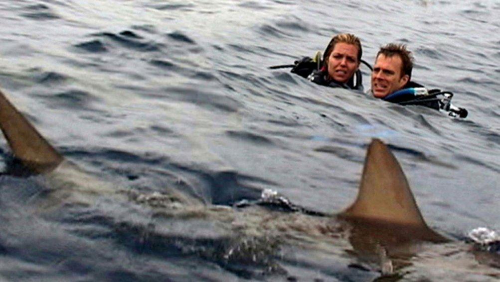 Daniel Travis e Blanchard Ryan in una scena del film Open Water