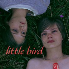 Locandina di Little Bird