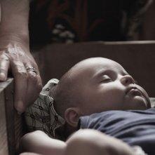 Leone nel basilico: un'immagine ravvicinata sul bambino