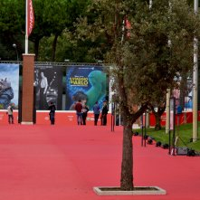 Roma 2015: un immagine del red carpet