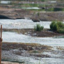 The Walking Dead: Lennie James e John Carroll Lynch in Qui non è qui