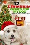 Locandina di I 12 desideri di Natale